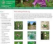 Link zum Botanischen Verein zu Hamburg